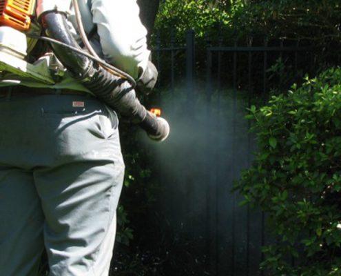 Şişli Belediyesi İlaçlama Servisi, Şişli Belediyesi Böcek İlaçlama | Lora Temizlik İlaçlama
