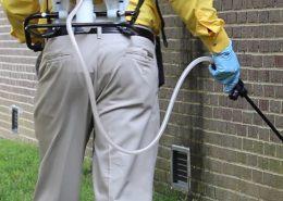 Avcılar Belediyesi İlaçlama Servisi | Lora Temizlik İlaçlama