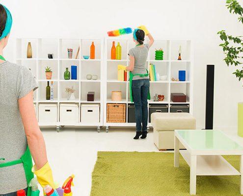 Bakırköy Ev Temizliği, Bakırköy Ev Temizleme | Lora Temizlik İlaçlama