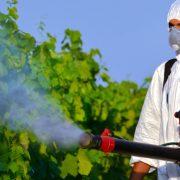 Çatalca Belediyesi İlaçlama Servisi | Lora Temizlik İlaçlama