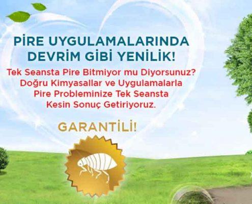 Yeşilköy Böcek İlaçlama Servisi, Yeşilköy Böcek İlaçlama, Yeşilköy İlaçlama, Yeşilköy Pire İlaçlama, Yeşilköy Haşere İlaçlama, Yeşilköy Belediyesi İlaçlama