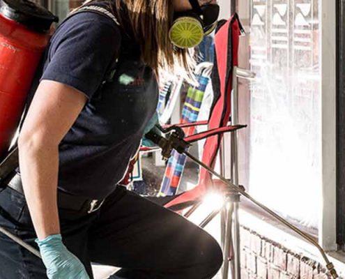 Arnavutköy Böcek İlaçlama Firması, Arnavutköy Böcek İlaçlama, Arnavutköy İlaçlama, Arnavutköy Pire İlaçlama, Arnavutköy İlaçlama Şirketi
