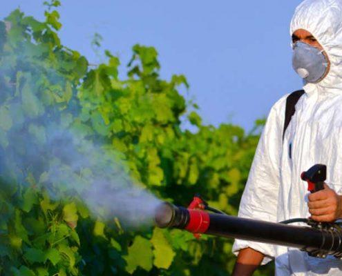Başakşehir Böcek İlaçlama Firması, Başakşehir Böcek İlaçlama, Başakşehir İlaçlama, Başakşehir Pire İlaçlama, Başakşehir Haşere İlaçlama