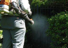 Şişli Belediyesi İlaçlama Servisi, Şişli Belediyesi Böcek İlaçlama   Lora Temizlik İlaçlama