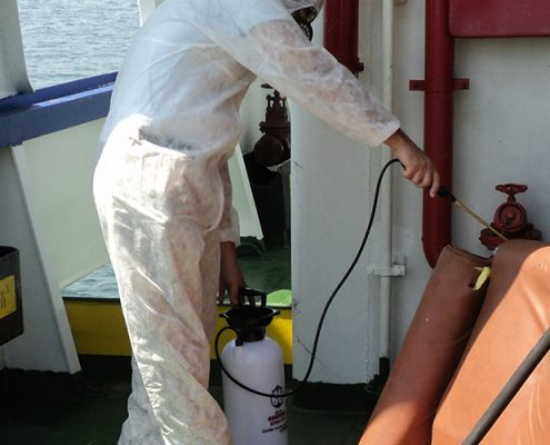 Gemi İlaçlama | Lora Temizlik İlaçlama