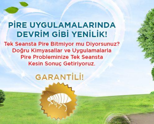 Beyoğlu Belediyesi İlaçlama Servisi | Lora Temizlik İlaçlama