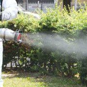 Silivri Böcek İlaçlama Firması, Silivri Böcek İlaçlama, Silivri İlaçlama, Silivri Pire İlaçlama, Silivri Haşere İlaçlama