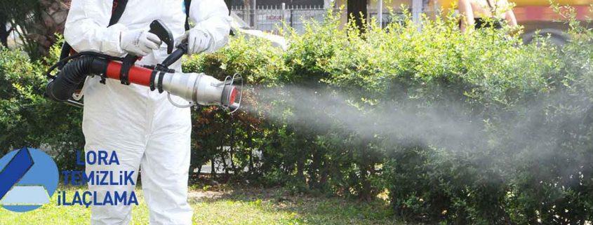 Maltepe Böcek İlaçlama Şirketi, Maltepe Böcek İlaçlama, Maltepe İlaçlama, Maltepe Pire İlaçlama, Maltepe Haşere İlaçlama