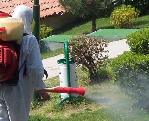 Zeytinburnu Böcek İlaçlama Firması, Zeytinburnu Böcek İlaçlama, Zeytinburnu İlaçlama, Zeytinburnu Pire İlaçlama, Zeytinburnu Haşere İlaçlama