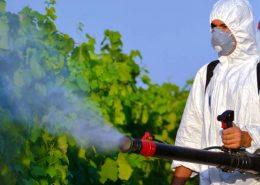 Tema İstanbul Böcek İlaçlama, Tema İstanbul İlaçlama, Tema İstanbul Pire İlaçlama, Tema İstanbul Haşere İlaçlama
