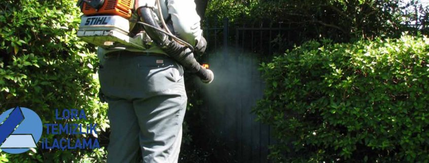 Çamlıca Böcek İlaçlama, Çamlıca İlaçlama, Çamlıca Pire İlaçlama, Çamlıca Haşere İlaçlama, Çamlıca Hamam Böceği İlaçlama