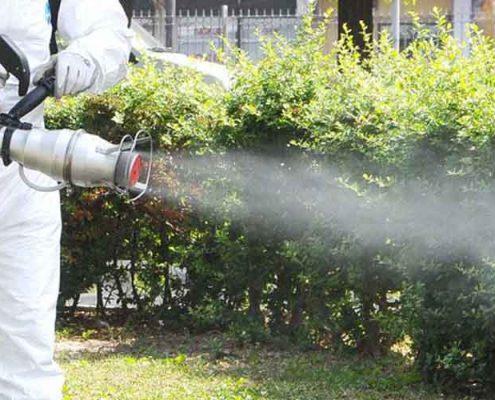 İçerenköy Böcek İlaçlama, İçerenköy İlaçlama, İçerenköy Pire İlaçlama, İçerenköy Haşere İlaçlama, İçerenköy Hamam Böceği İlaçlama